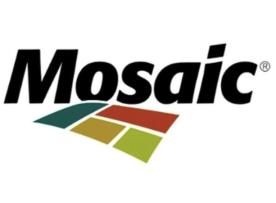 BRONZE2.Mosaic